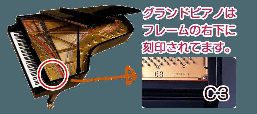 grand-model-mikata